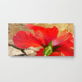 Back Of A Red Hibiscus Flower Against Stone Metal Print