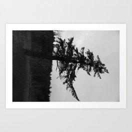 Character is like a tree Art Print