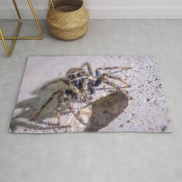 What's Shakin' Spidey? Macro Spider Photograph Rug