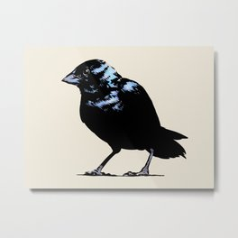 Blue-black Grassquit Bird Ink Illustration Metal Print