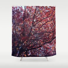 Under the trees - Autumn Shower Curtain