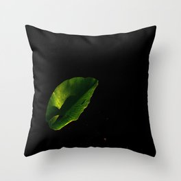 society6.......prints, and photos on t-shirts, mugs, framed prints, throw pillows, clocks, and rugs  Throw Pillow
