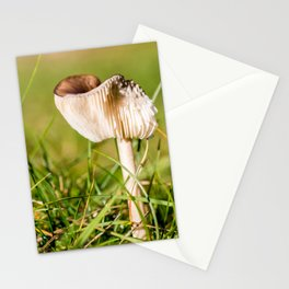 Brown mushroom in grass in autumn Stationery Cards