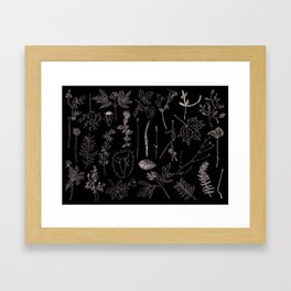 Nature Botanical Drawings by young kid artists, profits are donated to The Ivy Montessori School Framed Art Print