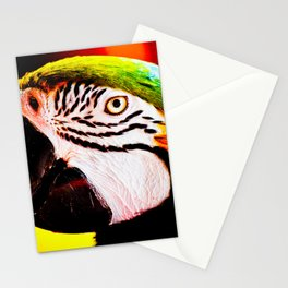 # 20 Stationery Cards