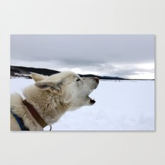 Calling Out in Color Canvas Print
