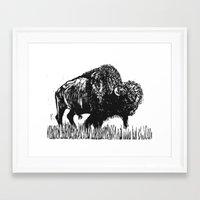 buffalo Framed Art Prints featuring Buffalo by Elizabeth Stettler