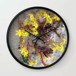 HAIRY COLLECTION (24) Wall Clock