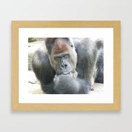 Lowland Gorilla in Deep Thought Framed Art Print