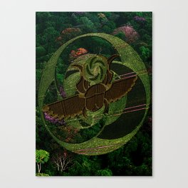Coleoptera Canvas Print