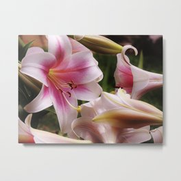 To Dream of Lilies Metal Print