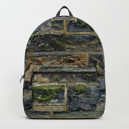 Mossy Bricks Backpack
