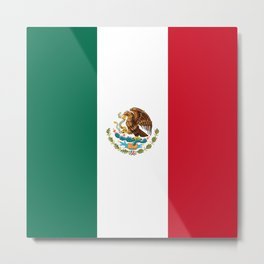 The Mexican flag Metal Print