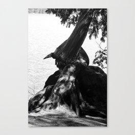 Star Lake Twist Canvas Print