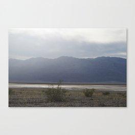 Death Valley Spring Bloom 2016 Water Canvas Print