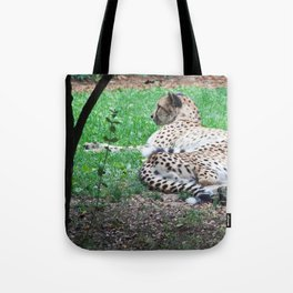 Still Cheetahs Tote Bag