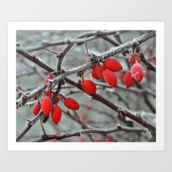 Wanna Pick Some Snowberries? Art Print