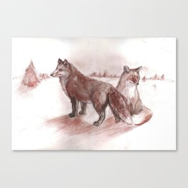 Ural foxes Canvas Print