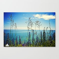 Water In Sight Canvas Print