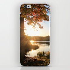 Fleeting Fall iPhone & iPod Skin