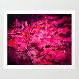 Angry Fall Leaves Art Print