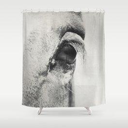 HorSe (V2 grey) Shower Curtain