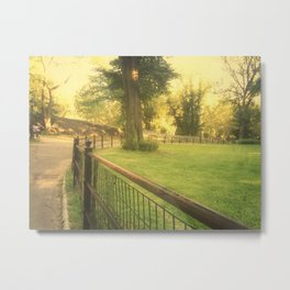 Central Park: Around the Bend Metal Print