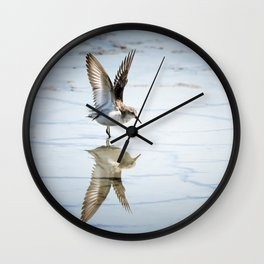 Sanderling Reflection Wall Clock