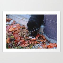 Cat As Well Art Print