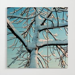 Crispy winter tree Wood Wall Art