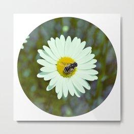 We Bee Chillin Metal Print