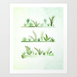 Summer Succulent Garden Art Print
