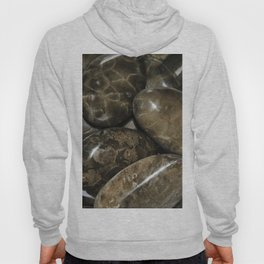 Fossilized Coral Hoody