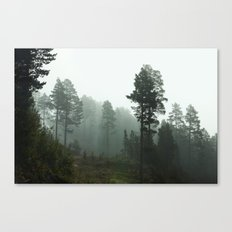 Foggy Forest In The Mountains I (Norway) Canvas Print
