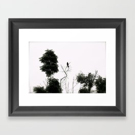 Black Bird Framed Art Print