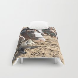 Clydesdale Team Comforters