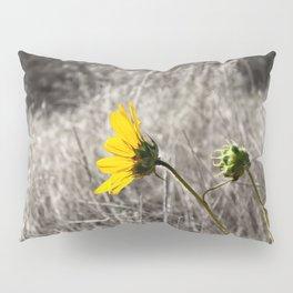 Sunflower Daydream Pillow Sham