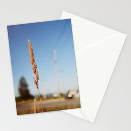 Tall Grass Stationery Cards