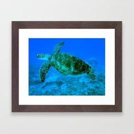 Green Turtle Framed Art Print