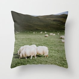 Icelandic sheep grazing in field Throw Pillow