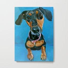 Sassy the Dashchund Dog Portrait Metal Print
