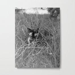 Stealth mode Metal Print
