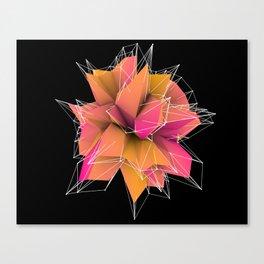 3d polygons  Canvas Print