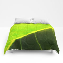 Diagonal Channel Comforters