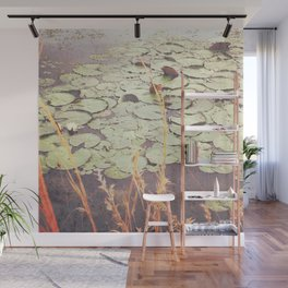 Southern Waterlily Pond Photograph Wall Mural