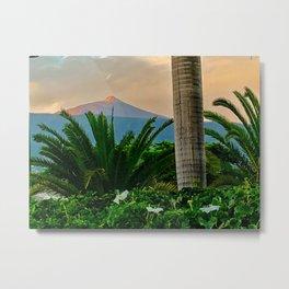 Teide Garden Metal Print