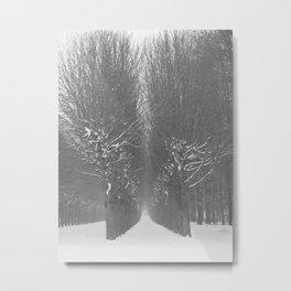 Snow Fontainebleau Metal Print