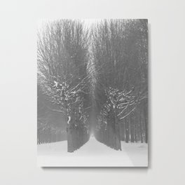 Snow Fontainebleau Metal Print