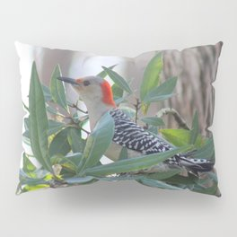 Red-Bellied Woodpecker Pillow Sham