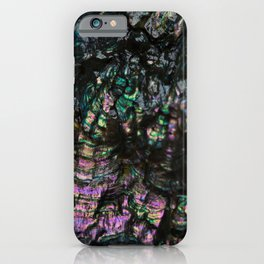 Abalone Shell 4 iPhone Case